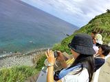イルカの見える丘 御蔵島