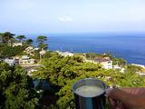 御蔵島モーニングコーヒー