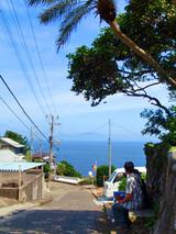 御蔵島散策�
