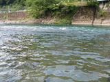 一ツ瀬川の鮎ポイントと自分が釣った村所橋周辺 (4)