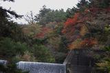霧島の紅葉 (7)