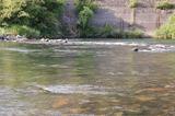五ヶ瀬川 (3)