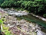 22日の小丸川 (5)