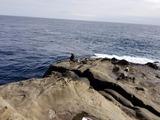 水島群礁の釣り風景