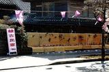 綾町の雛祭り (3)
