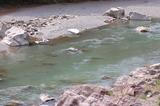 小丸川の濁り (1)
