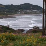 20日の金ヶ浜の海