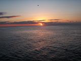 日向灘に日が昇る