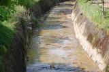 濁り水を排水 (1)