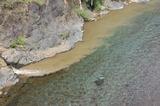 小丸川に泥水が (1)