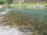 一ツ瀬川の鮎ポイントと自分が釣った村所橋周辺 (6)