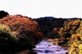 五ヶ瀬の紅葉 (1)