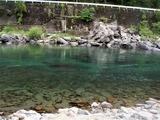 一ツ瀬川の鮎釣り (3)