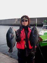蒲戸崎でも良型クロ(グレ)が数釣れていました