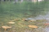 五ヶ瀬川 (2)