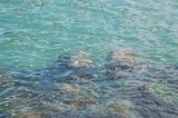 透明度を増した海
