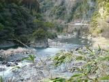 五ヶ瀬川上流