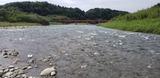 球磨川と川辺川の合流点