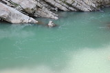 小丸川の濁り (3)
