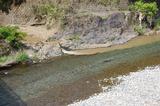 小丸川の泥水が