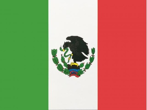 mxnflag