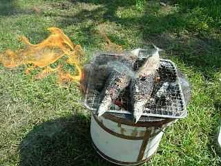 秋刀魚はやっぱり七輪で焼きたい!