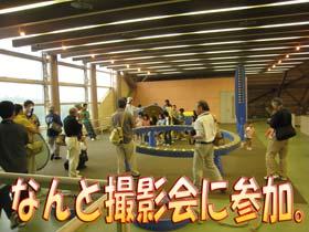 2008うんぼぼの会1