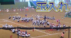 5才児運動会4