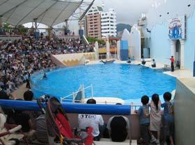 須磨海浜水族園7
