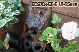 EOS7D_TEST_004