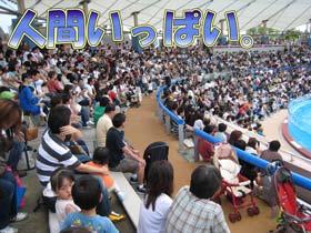 須磨海浜水族園6