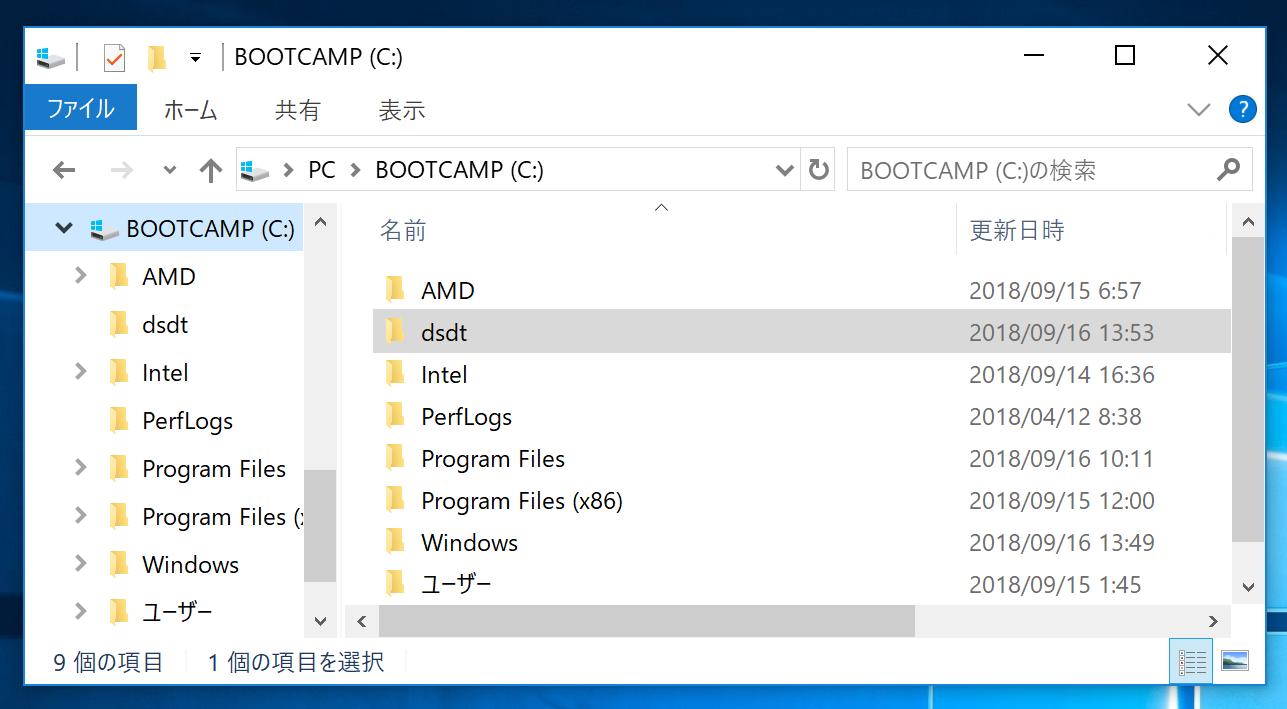 dsdt_folder