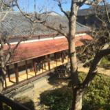 杉戸町・高橋屋の2階から眺める