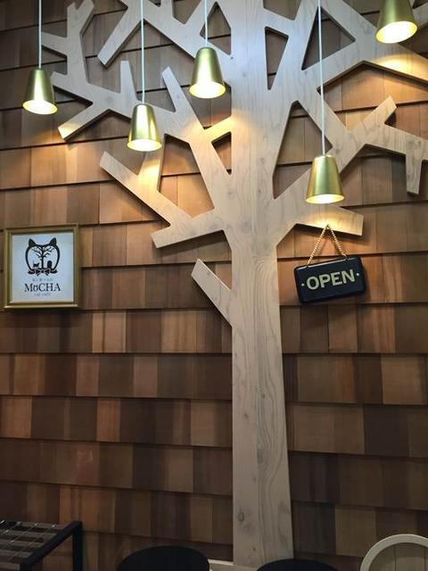猫カフェ モカ@池袋 3