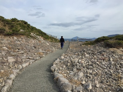 式根島 神引展望台 9