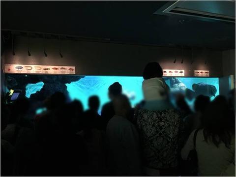 葛西臨海水族園 6