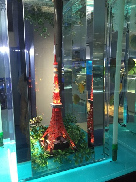 東京タワー水族館