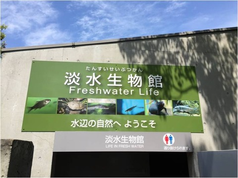 葛西臨海水族園 22