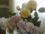 eng-rose