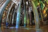 サグラダ・ファミリアの大聖堂