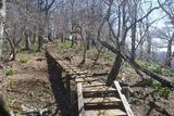 尾根道の木道