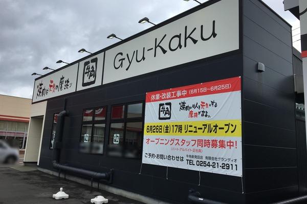 gyu1-1