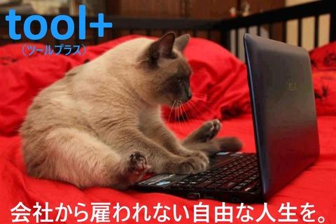 tool+20村橋巧