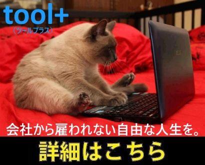 tool+CAT