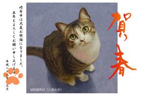 年賀状2016猫