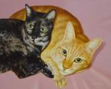 ペットの肖像画『たまちゃん&マイケルちゃん』
