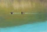 パステル画作品『鴨のいる風景』