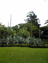 Image248