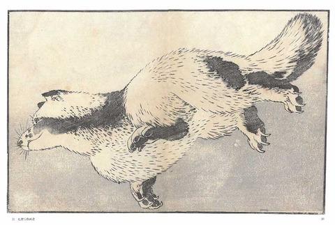 北斎写真画譜カラー画像3 のコピー