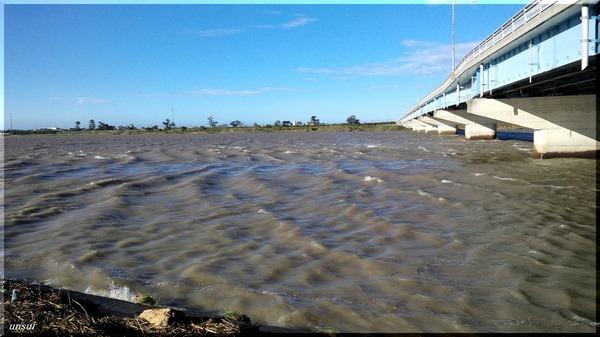 台風通過後の太田川